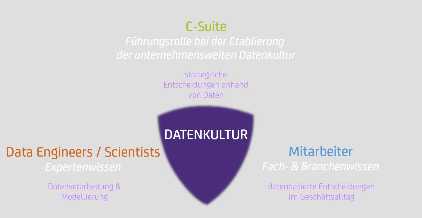 Datenkultur-rollen